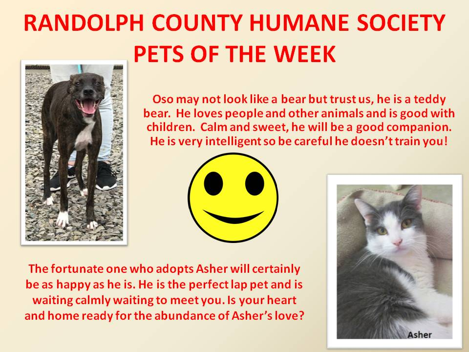 This image has an empty alt attribute; its file name is RANDOLPH-COUNTY-HUMANE-SOCIETY-72.jpg